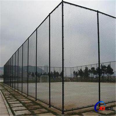 加工定制球场网围栏 镀锌勾花护栏网 体育场围栏网厂家批发