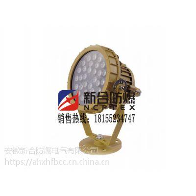 专业厂家生产工业专用防爆防腐灯具/BAT51系列防爆防腐投光灯