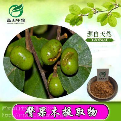 森冉生物供应非洲臀果木提取物10:1/刺李提取物