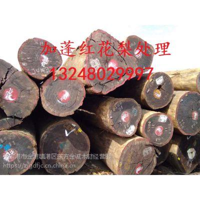 加蓬红花梨原木优价处理