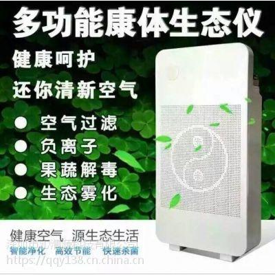 批发负离子空气净化器康惠来多功能康体生态仪马帮会销