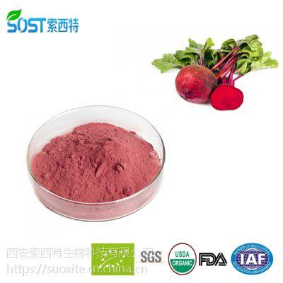 甜菜粉 西安索西特生物规格 甜菜根粉 现货供应 品质保证