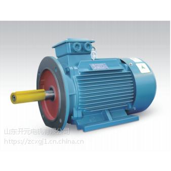 山东开元电机有限公司YVF250M-2-55KW变频电机