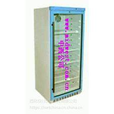 中西恒温柜 型号:FY12/YS-280L库号:M402046