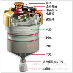 江西钢铁厂用Pulsarlube自动加脂器价格