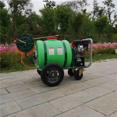 四轮小型喷雾杀虫机 推车式高射程打药机 志成牌汽油机喷雾器
