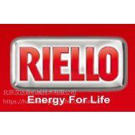 北京汉达森专业销售意大利RIELLO UPS燃烧器油泵R.B.L 40G
