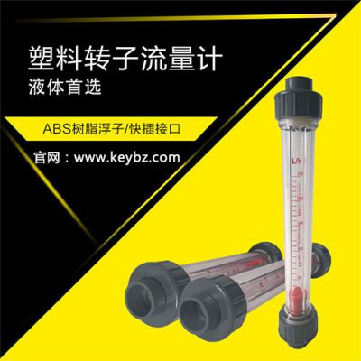 LZS管道式浮子流量计液体水_上海佰质仪器