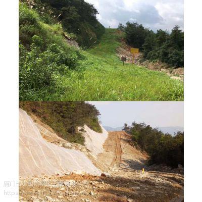 矿区修复工程施工四川攀枝花三水园林专业绿化植草公司