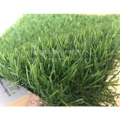 婚礼展览运动草坪人工塑料假草皮厂家人造仿真地毯草坪幼儿园草坪