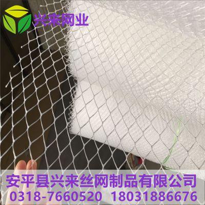 成都塑料网 弹性塑料网 网床育雏鹅技术