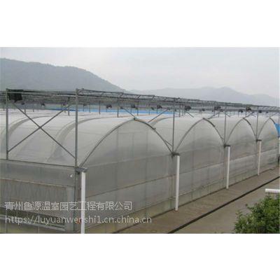 晋中 供应薄膜连栋温室大棚 施工厂家