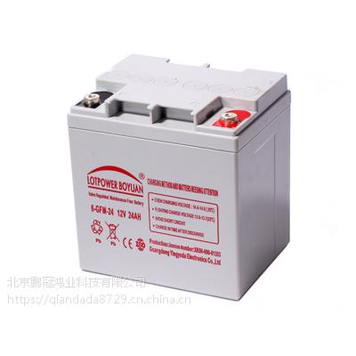 乐珀尔6-GFM-24蓄电池报警、安防系统ups应急专用干电池电瓶