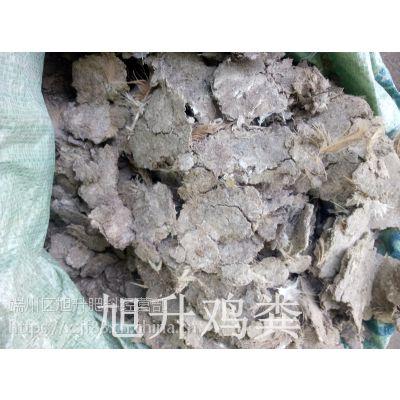 广东江门纯干无杂质鸡粪有机肥 江门哪里有纯干鸡粪卖人畜粪便批发