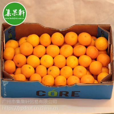 新鲜水果南非进口供应 Nova柑饮品榨汁专用 广州江南水果市场