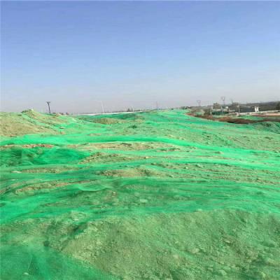 建筑工地绿化网 防尘保护网 路边覆盖土网