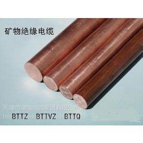 天津津猫电缆 BTTQ轻型铜护套矿物绝缘电缆