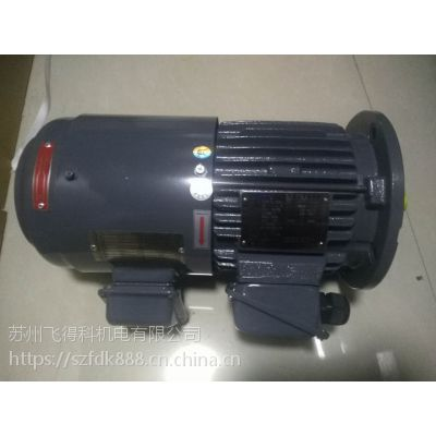 TECO台湾东元三相变频马达EVVFYJ079 0.75KW 独立风扇 强冷