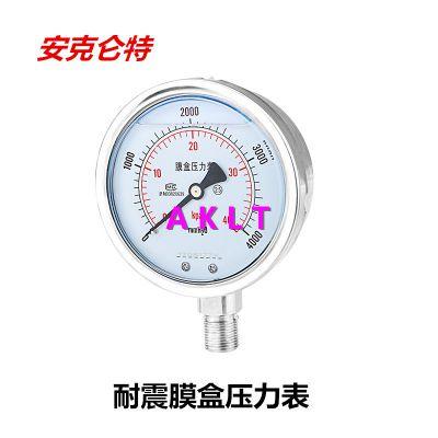AKLT-YNE100不锈钢耐震微压膜盒压力表