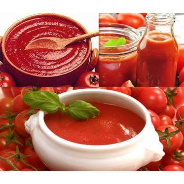 番茄清汤火锅-菌汤鸳鸯锅底料-清油火锅底料批发