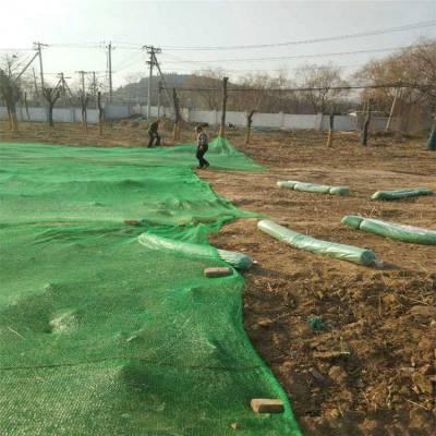 建筑工地隔离网 绿色三针盖土网 万泰绿色盖土网图
