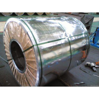 冷轧卷 SP132-370