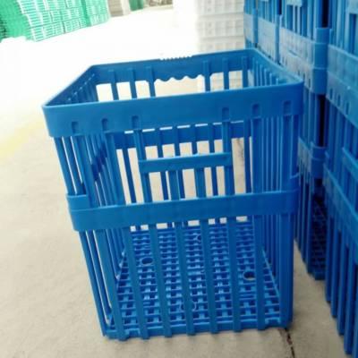 厂家直销塑料种蛋筐 鸡蛋鸭蛋周转筐 种蛋运输筐
