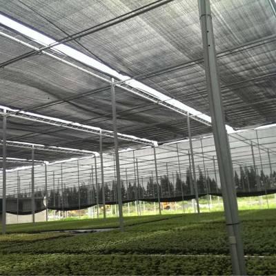 大棚电动内外遮阳系统安装|温室大棚遮阴设施设计