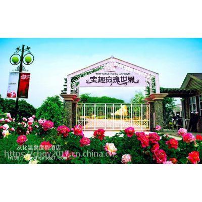 从化温泉度假酒店-观赏宝趣玫瑰花、钱岗古村二天游