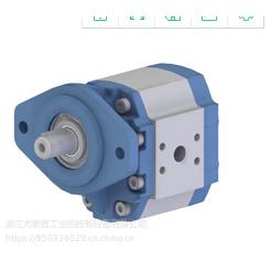 HPI油泵P2DCN