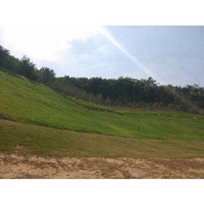 郑州美化园林天然麻椰固土毯 植被生态袋厂家报价