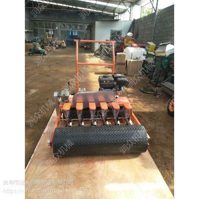 手推四行蔬菜种子播种机 出苗均匀菠菜种植机 自走式6行播种机