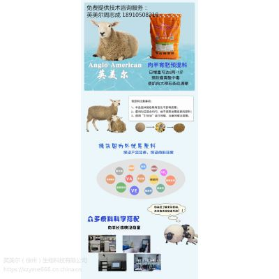 2018盘点肉羊预混料厂家,优质的肉羊预混料用料反馈