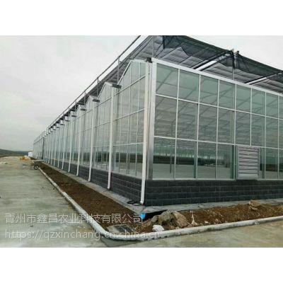 江西绿色生态园林式餐厅玻璃温室餐厅6000平方米、建造高度7米型承接厂家