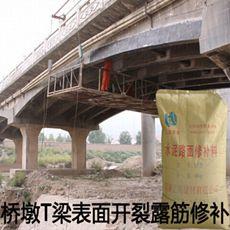 桥梁伸缩缝裂缝修补,水泥路面坑洞修补料