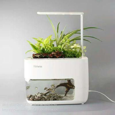 恬薇现代智能鱼菜共生系统生态种植办公室智能桌面植物生长机