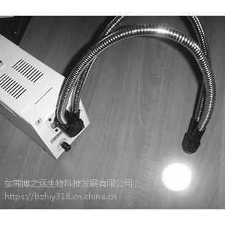BZY-310型动物冷光源(双头)