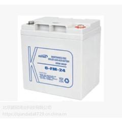 蓄电池现货供应KSTAR阀控密封式铅酸蓄电池6-FM-24科士达12v24电瓶