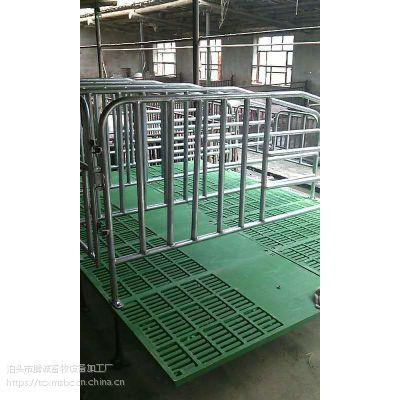 批发母猪定位栏 复合板高床母猪定位栏