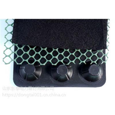 山东2公分塑料排水板155-5081-3655