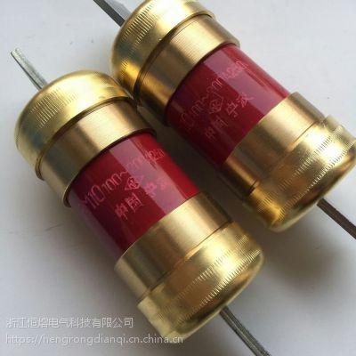 浙江恒熔厂家直销无填料封闭管式熔断器 保险管 RM10-350A 200A 250V