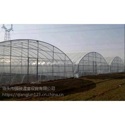 玻璃式温室连栋和薄膜温室连栋我厂专业设计及加工建造