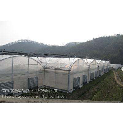 广州 连栋薄膜蔬菜温室大棚造价 工程案例