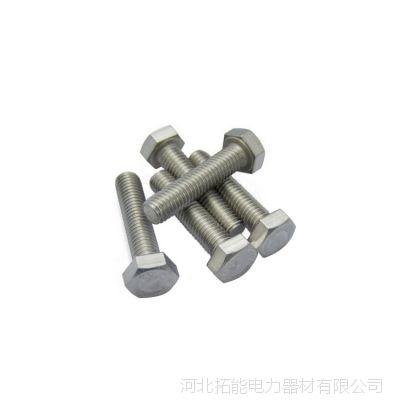 厂家直销拓能 螺栓 电力螺栓 热镀锌六角螺栓 M24 欢迎采购