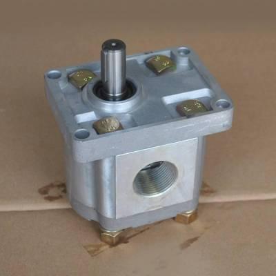 CBN-L310-LB系列齿轮泵-SKBTFLUID牌