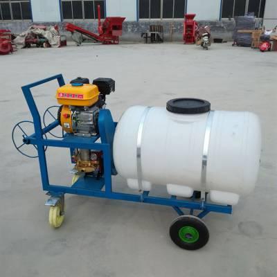 高射程农用打药机 手推式远程农田喷药机 大容量汽油喷雾器