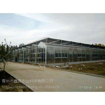 安徽保温性能好阳光板温室大棚8mm墙体、内部独立基础7500平米建设厂家
