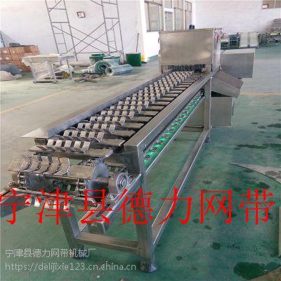 速冻玉米高速切段机 冻玉米分切机 甜玉米切段机 切断机德隆机械