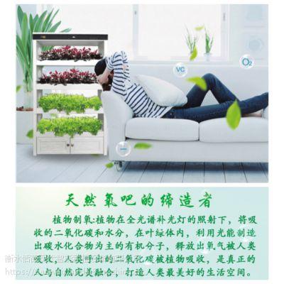 全智能生态菜养柜无土栽培智能蔬菜种植学校教学设备