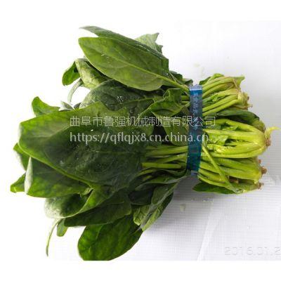 蔬菜扎捆机 多功能捆扎机 供应大型商用捆扎机厂家 鲁强机械